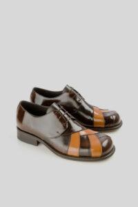 Zapato Zodiac Ikon Brown 1